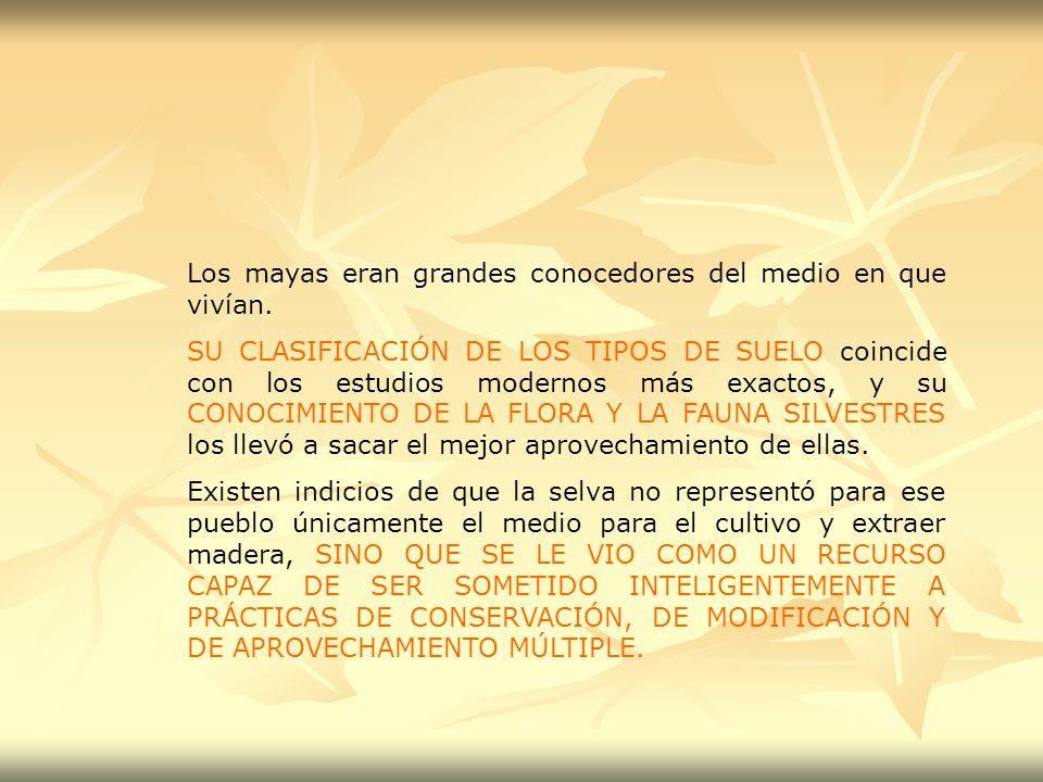 Los mayas eran grandes conocedores del medio en que vivían. SU CLASIFICACIÓN DE LOS TIPOS DE SUELO coincide con los estudios modernos más exactos, y s