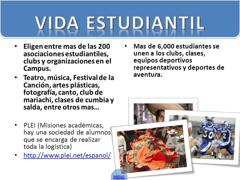 Eligen entre mas de las 200 asociaciones estudiantiles, clubs y organizaciones en el Campus.