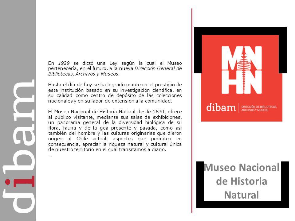 Museo Nacional de Historia Natural En 1929 se dictó una Ley según la cual el Museo pertenecería, en el futuro, a la nueva Dirección General de Bibliot