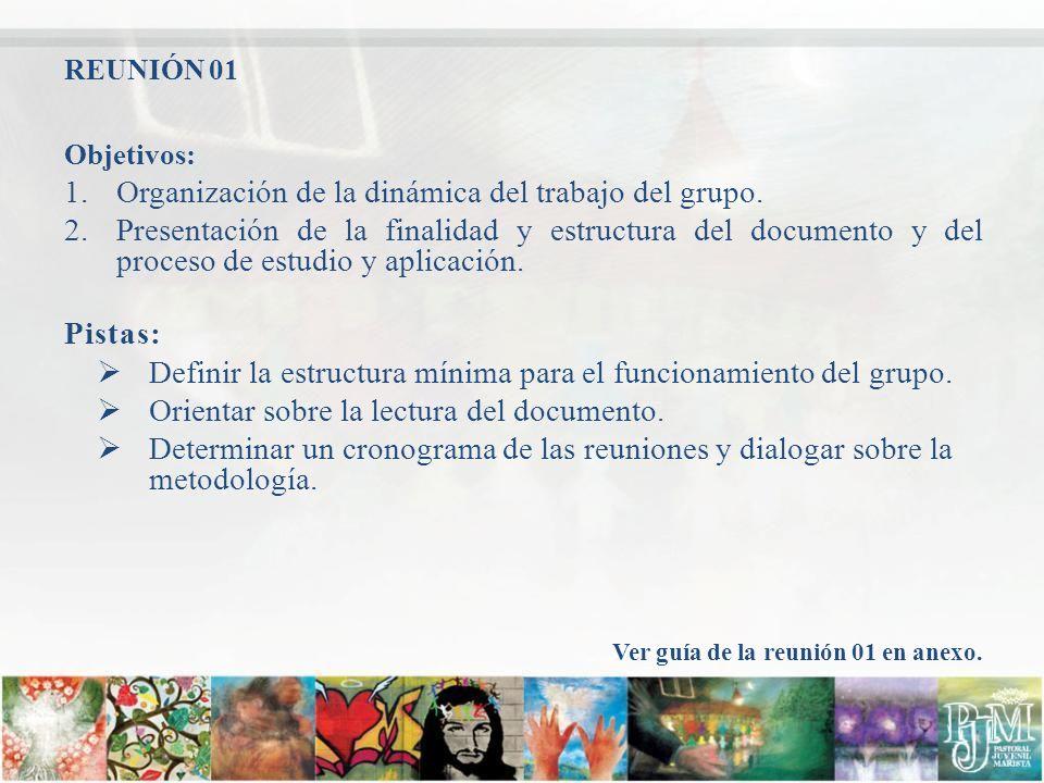 Objetivos: 1.Organización de la dinámica del trabajo del grupo. 2.Presentación de la finalidad y estructura del documento y del proceso de estudio y a