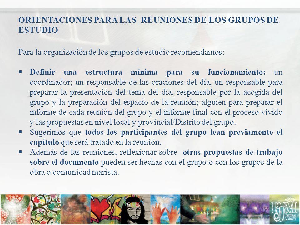 ORIENTACIONES PARA LAS REUNIONES DE LOS GRUPOS DE ESTUDIO Para la organización de los grupos de estudio recomendamos: Definir una estructura mínima pa