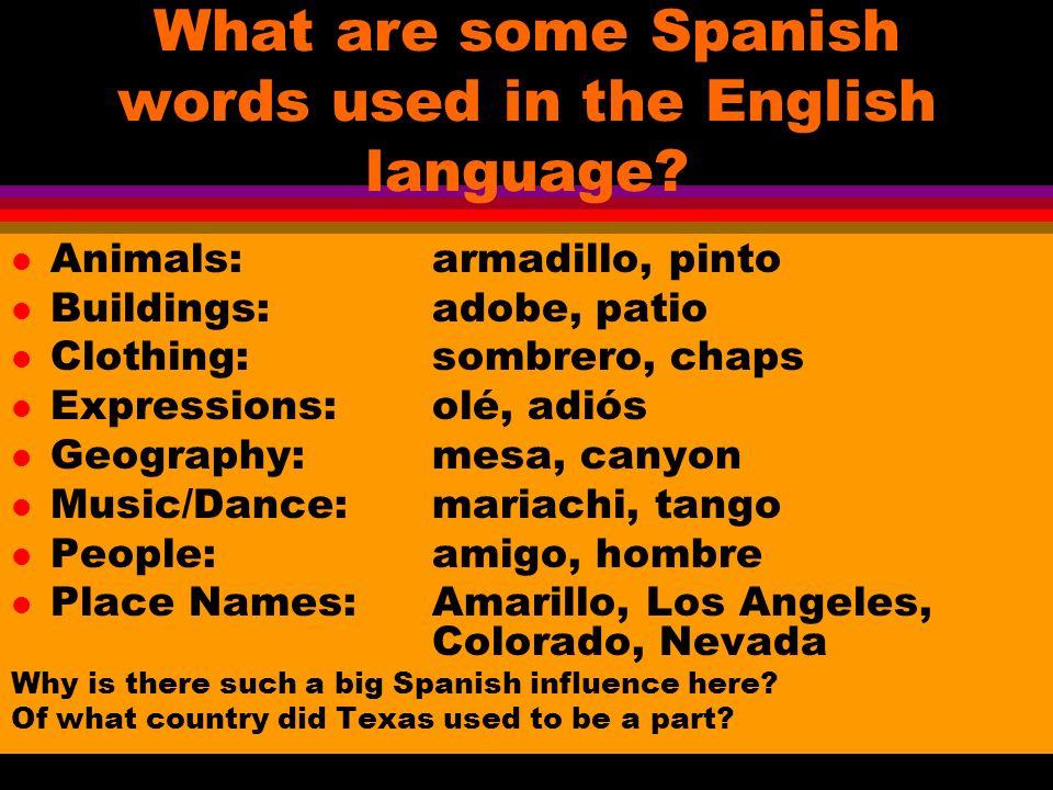 Las frases l ¿Como se escribe ______ en español.How do you spell _____ in Spanish.