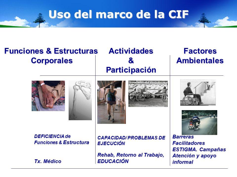 Uso del marco de la CIF Funciones & Estructuras CorporalesActividades&Participación Factores Ambientales BarrerasFacilitadores ESTIGMA. Campañas Atenc