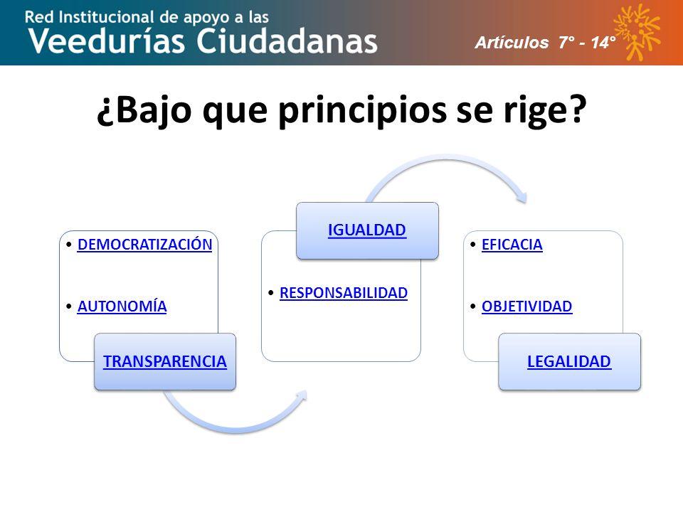 ¿Bajo que principios se rige? Artículos 7° - 14°