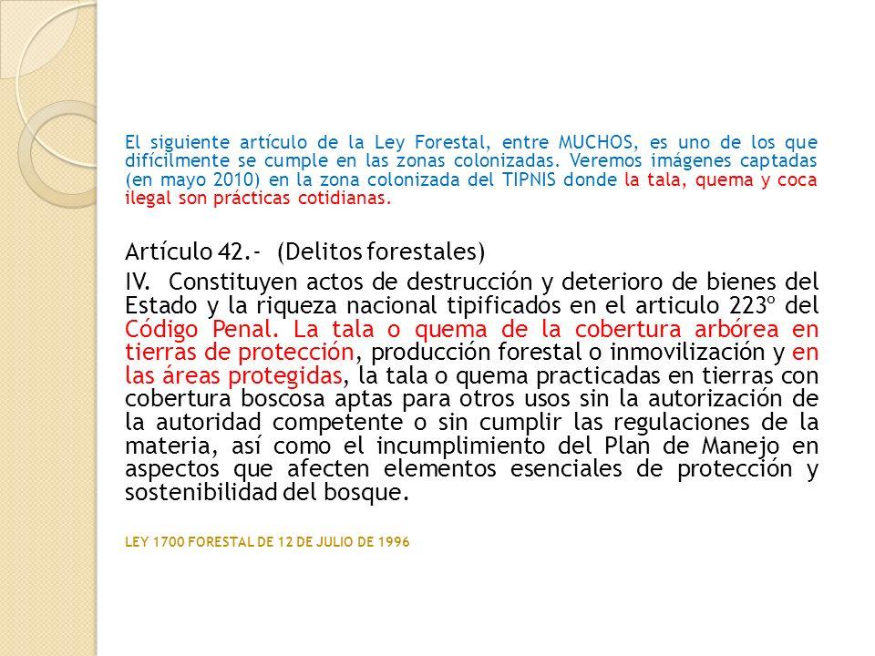El siguiente artículo de la Ley Forestal, entre MUCHOS, es uno de los que difícilmente se cumple en las zonas colonizadas. Veremos imágenes captadas (