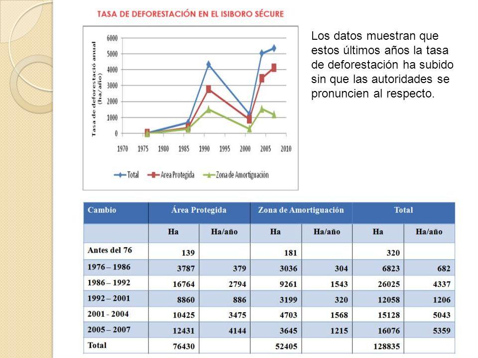 Los datos muestran que estos últimos años la tasa de deforestación ha subido sin que las autoridades se pronuncien al respecto.