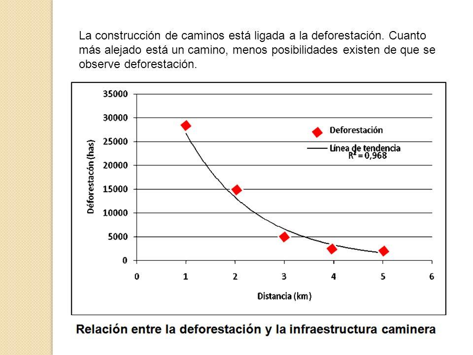 La construcción de caminos está ligada a la deforestación. Cuanto más alejado está un camino, menos posibilidades existen de que se observe deforestac