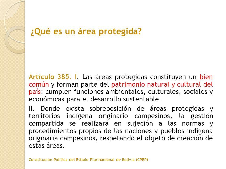 Artículo 385. I. Las áreas protegidas constituyen un bien común y forman parte del patrimonio natural y cultural del país; cumplen funciones ambiental