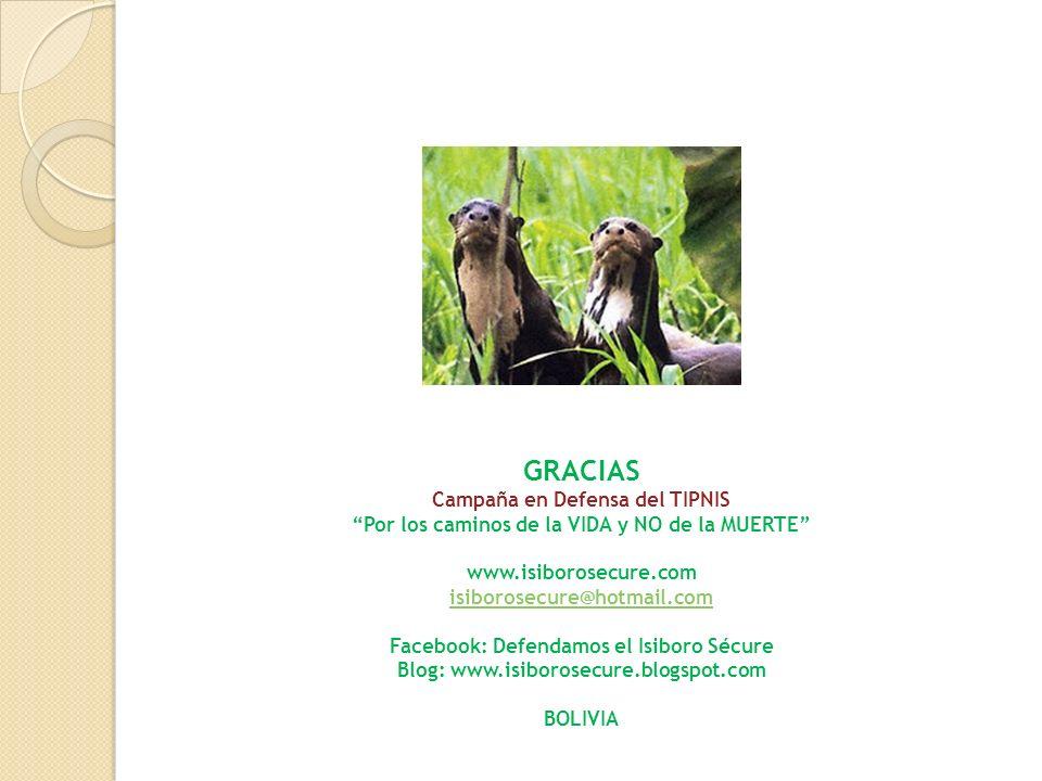 GRACIAS Campaña en Defensa del TIPNIS Por los caminos de la VIDA y NO de la MUERTE www.isiborosecure.com isiborosecure@hotmail.com Facebook: Defendamo