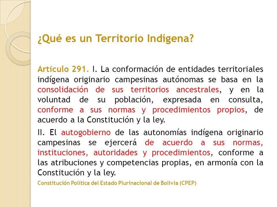 Artículo 291. I. La conformación de entidades territoriales indígena originario campesinas autónomas se basa en la consolidación de sus territorios an