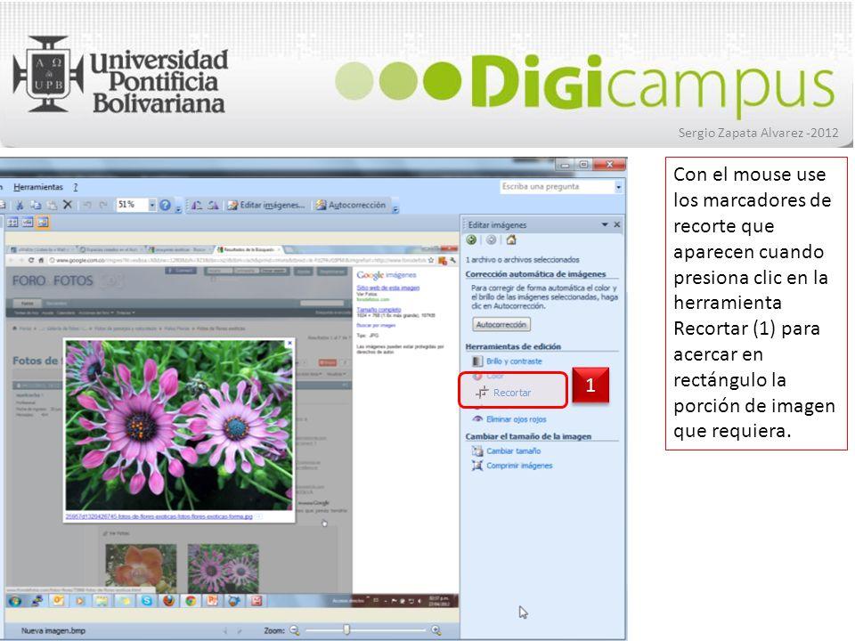 Sergio Zapata Alvarez -2012 Cuando termine de ajustar el tamaño de la imagen, presione clic en el botón Aceptar y así quedará solamente visible la imagen que estaba enmarcada.