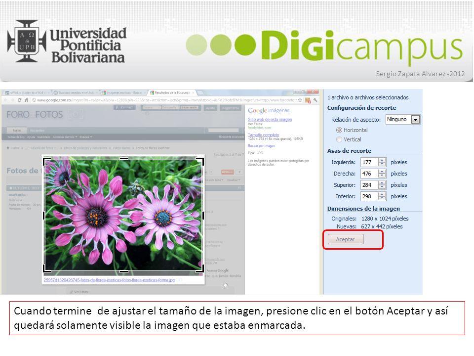 Sergio Zapata Alvarez -2012 Cuando termine de ajustar el tamaño de la imagen, presione clic en el botón Aceptar y así quedará solamente visible la ima