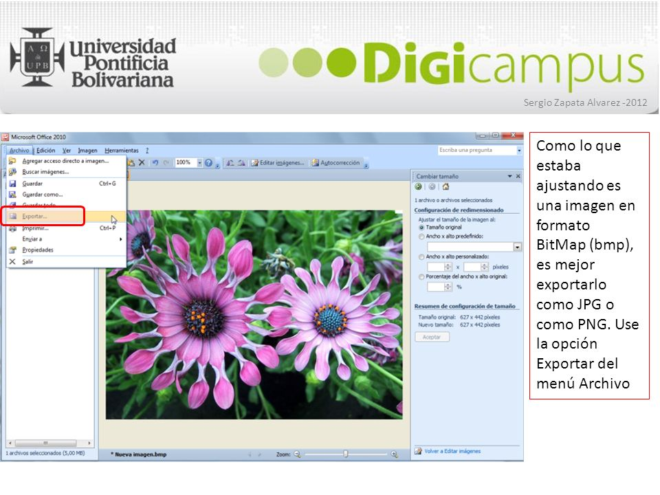 Sergio Zapata Alvarez -2012 Como lo que estaba ajustando es una imagen en formato BitMap (bmp), es mejor exportarlo como JPG o como PNG. Use la opción