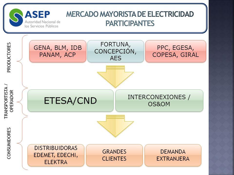 GENA, BLM, IDB PANAM, ACP FORTUNA, CONCEPCIÓN, AES PPC, EGESA, COPESA, GIRAL ETESA/CND INTERCONEXIONES / OS&OM DISTRIBUIDORAS EDEMET, EDECHI, ELEKTRA DISTRIBUIDORAS EDEMET, EDECHI, ELEKTRA GRANDES CLIENTES DEMANDA EXTRANJERA PRODUCTORES TRANSPORTISTA / OPERADOR CONSUMIDORES
