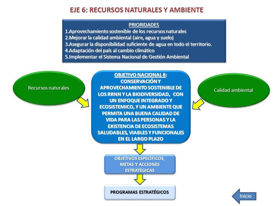 EJE 6: RECURSOS NATURALES Y AMBIENTE OBJETIVO NACIONAL 6: CONSERVACIÓN Y APROVECHAMIENTO SOSTENIBLE DE LOS RRNN Y LA BIODIVERSIDAD, CON UN ENFOQUE INT