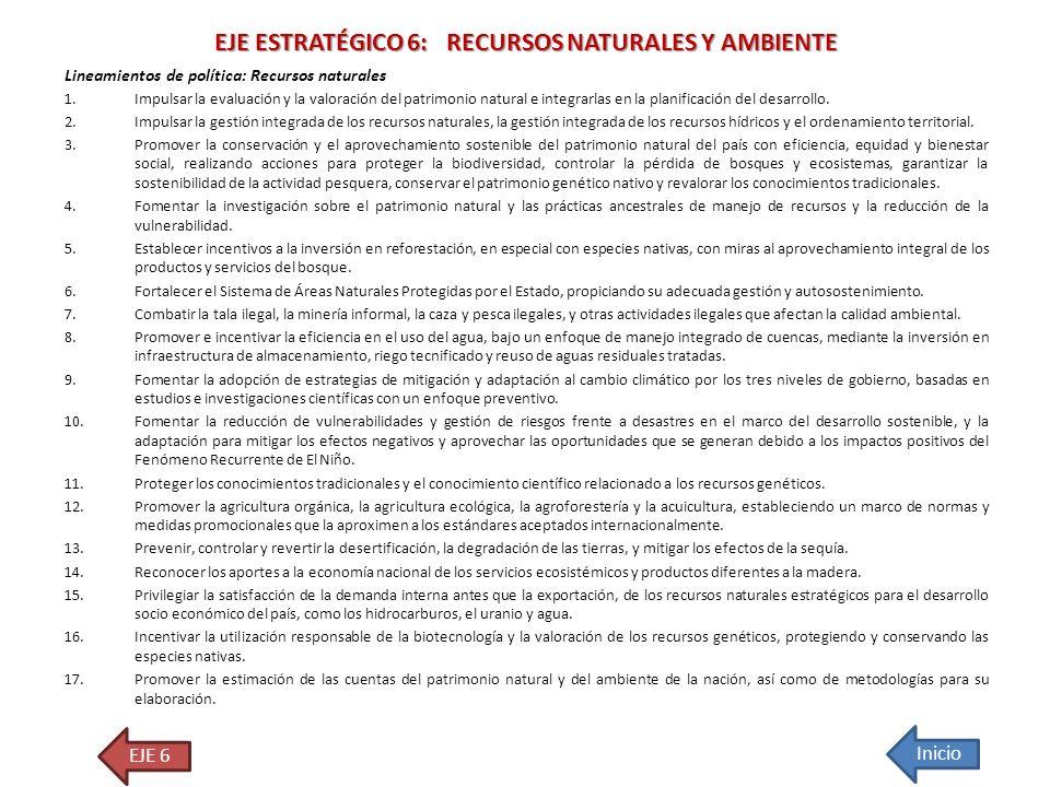 EJE ESTRATÉGICO 6: RECURSOS NATURALES Y AMBIENTE Lineamientos de política: Recursos naturales 1.Impulsar la evaluación y la valoración del patrimonio