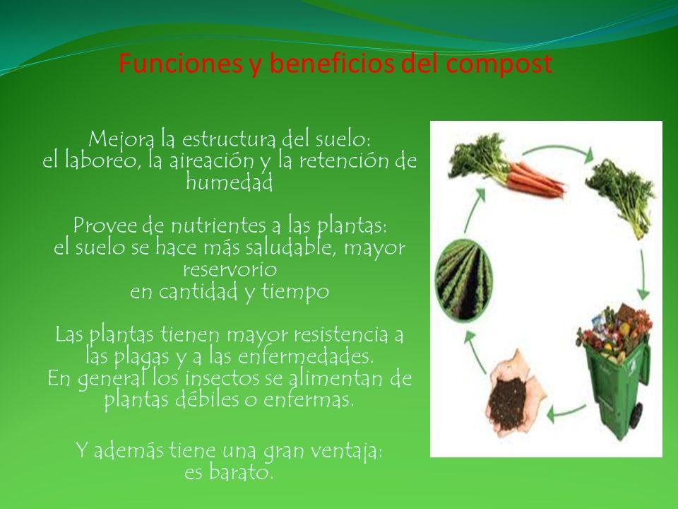 Funciones y beneficios del compost Mejora la estructura del suelo: el laboreo, la aireación y la retención de humedad Provee de nutrientes a las plant