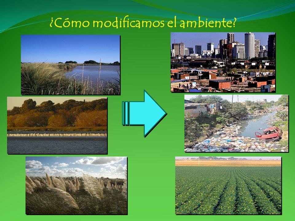 ¿Cómo modificamos el ambiente?