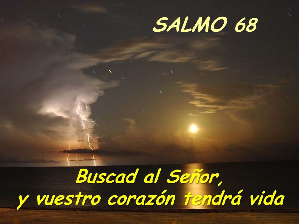 DOMINGO 15 del T.O Grupo de Liturgia Parroquia Santa María del Silencio Personas sordas y sordociegas. Madrid Música