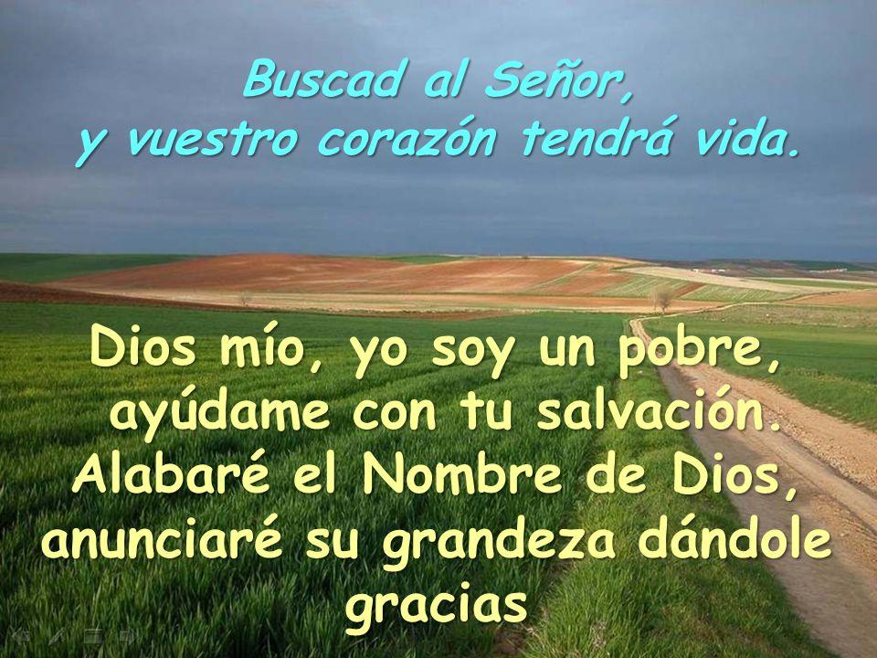 Buscad al Señor, y vuestro corazón tendrá vida Buscad al Señor, y vuestro corazón tendrá vida Señor, hablo contigo, escúchame por tu gran bondad, y ay