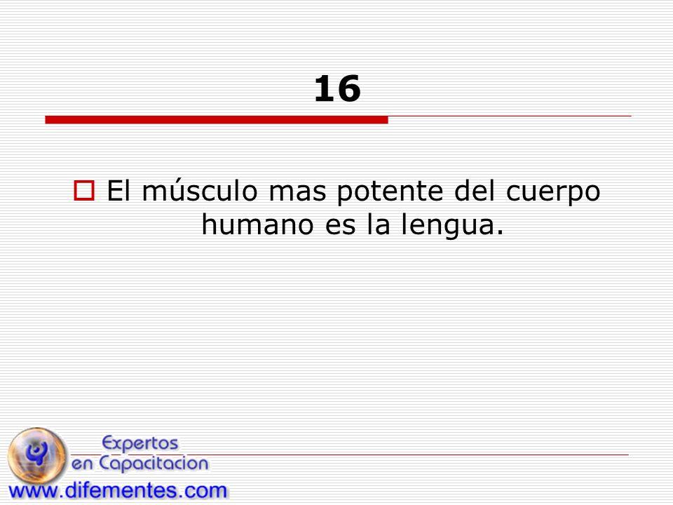 16 El músculo mas potente del cuerpo humano es la lengua.