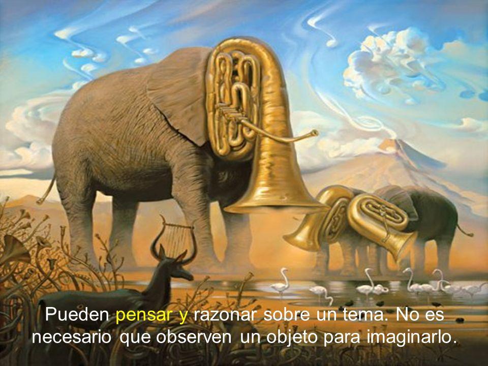 Pueden pensar y razonar sobre un tema. No es necesario que observen un objeto para imaginarlo.