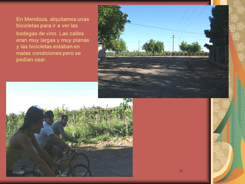15 En Mendoza, alquilamos unas bicicletas para ir a ver las bodegas de vino.