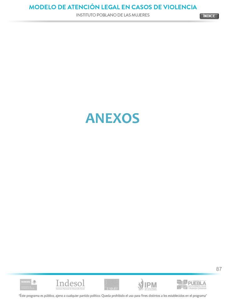 87 ANEXOS