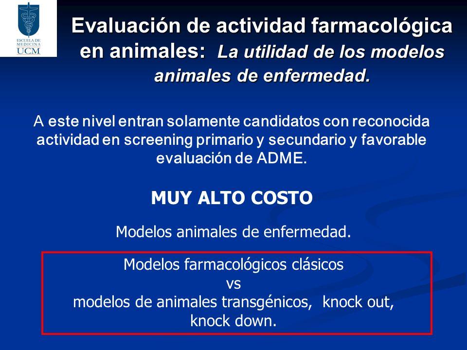 Evaluación de actividad farmacológica en animales: La utilidad de los modelos animales de enfermedad. A este nivel entran solamente candidatos con rec
