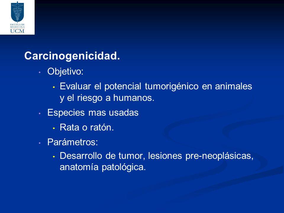 Carcinogenicidad.Objetivo: Evaluar el potencial tumorigénico en animales y el riesgo a humanos.