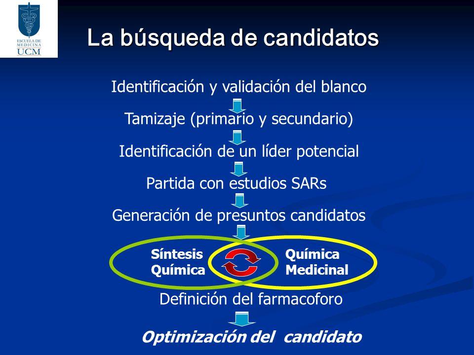 La búsqueda de candidatos Identificación y validación del blanco Tamizaje (primario y secundario) Identificación de un líder potencial Partida con est
