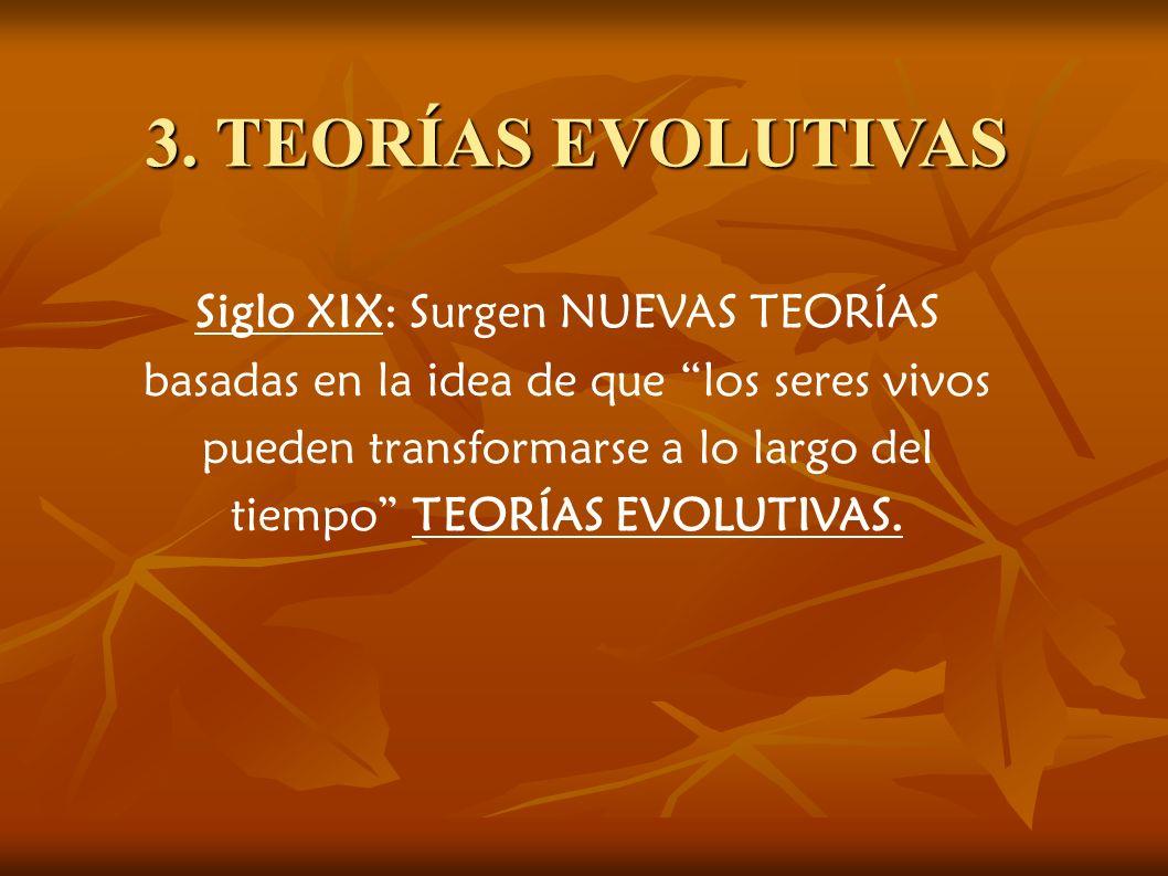 3. TEORÍAS EVOLUTIVAS Siglo XIX: Surgen NUEVAS TEORÍAS basadas en la idea de que los seres vivos pueden transformarse a lo largo del tiempo TEORÍAS EV