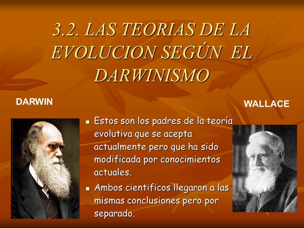 Estos son los padres de la teoría evolutiva que se acepta actualmente pero que ha sido modificada por conocimientos actuales. Estos son los padres de