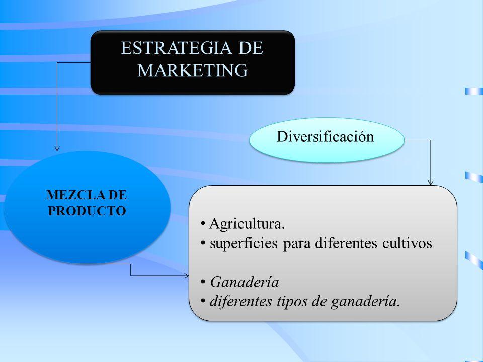 ESTRATEGIA DE MARKETING Agricultura. superficies para diferentes cultivos Ganadería diferentes tipos de ganadería. Agricultura. superficies para difer