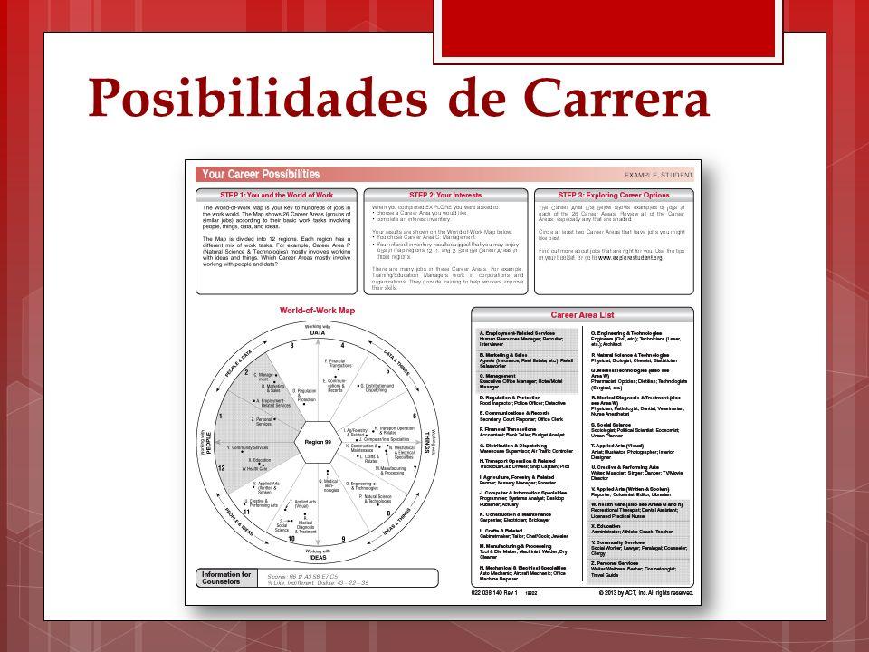 Posibilidades de Carrera