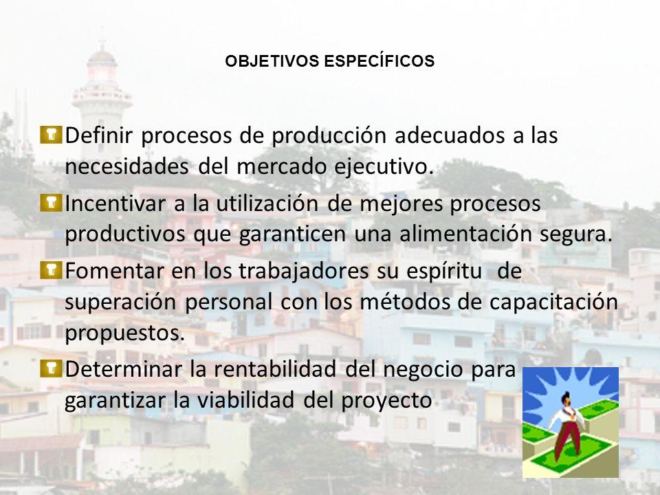 OBJETIVOS ESPECÍFICOS Definir procesos de producción adecuados a las necesidades del mercado ejecutivo. Incentivar a la utilización de mejores proceso