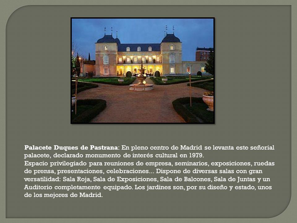 Palacete Duques de Pastrana: En pleno centro de Madrid se levanta este señorial palacete, declarado monumento de interés cultural en 1979. Espacio pri