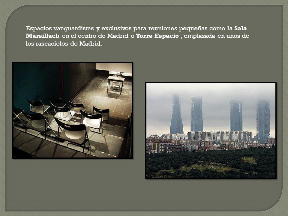 Espacios vanguardistas y exclusivos para reuniones pequeñas como la Sala Marsillach en el centro de Madrid o Torre Espacio, emplazada en unos de los rascacielos de Madrid.