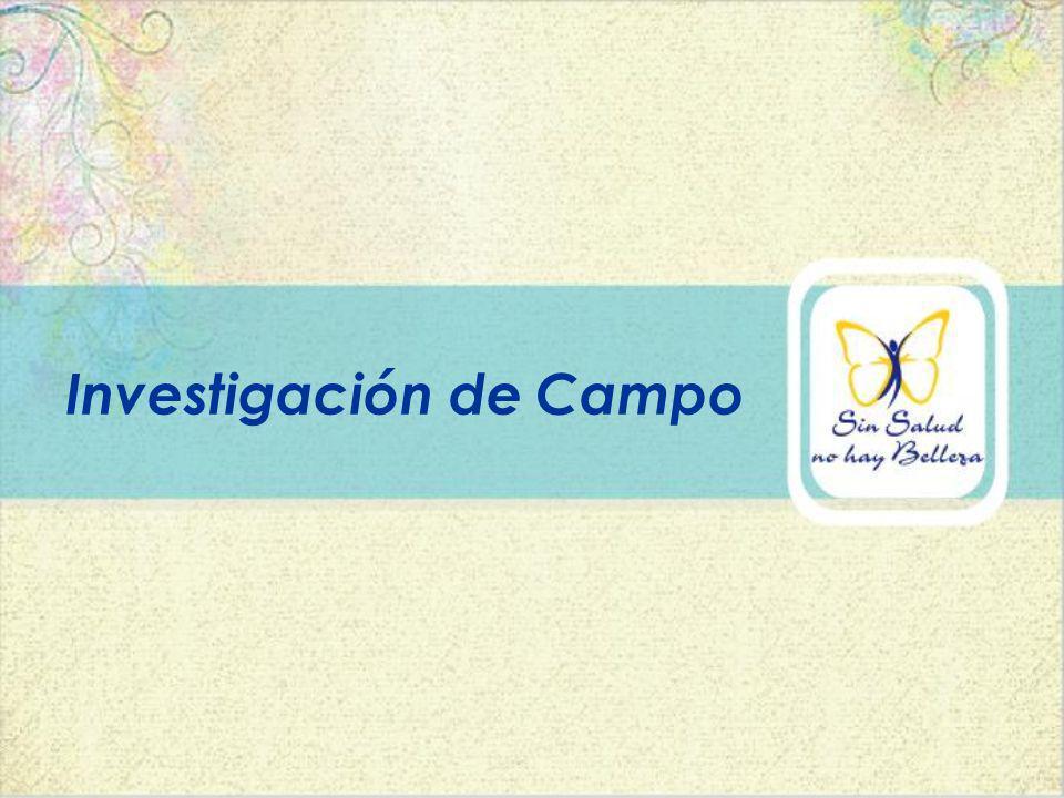 Creación de la Investigación.Obtención de la información.