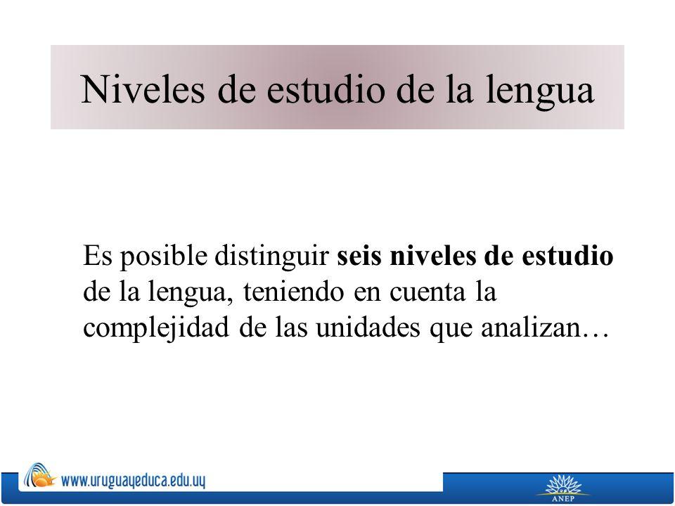 Niveles de estudio de la lengua Es posible distinguir seis niveles de estudio de la lengua, teniendo en cuenta la complejidad de las unidades que analizan…