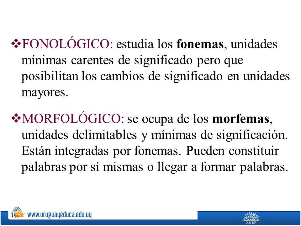 FONOLÓGICO: estudia los fonemas, unidades mínimas carentes de significado pero que posibilitan los cambios de significado en unidades mayores. MORFOLÓ