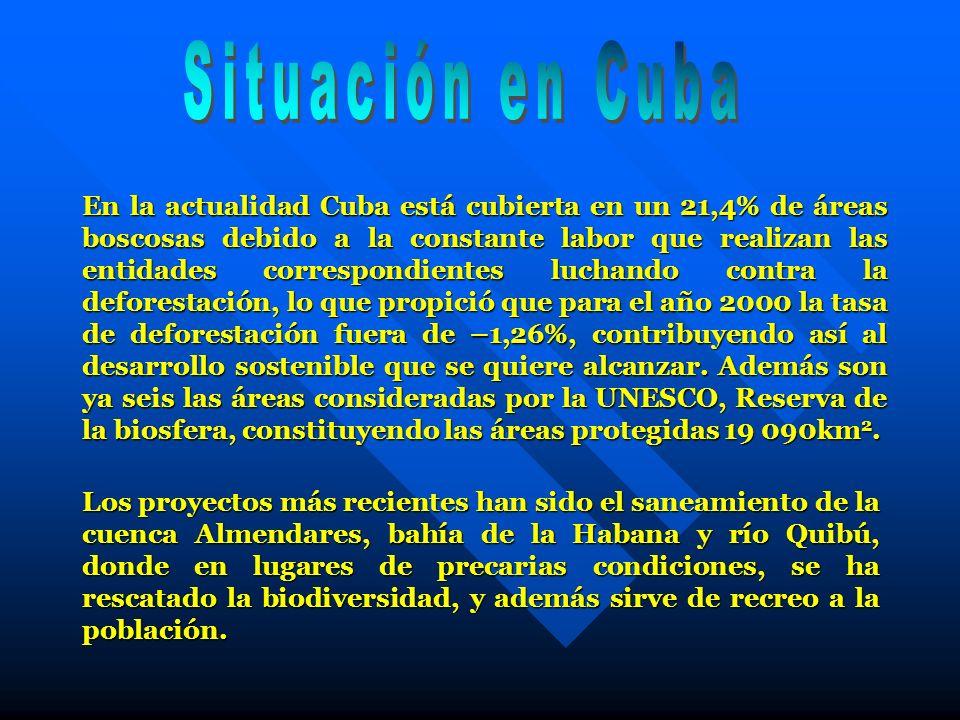 En la actualidad Cuba está cubierta en un 21,4% de áreas boscosas debido a la constante labor que realizan las entidades correspondientes luchando con