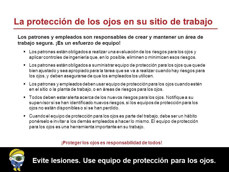 Evite lesiones.Use equipo de protección para los ojos.