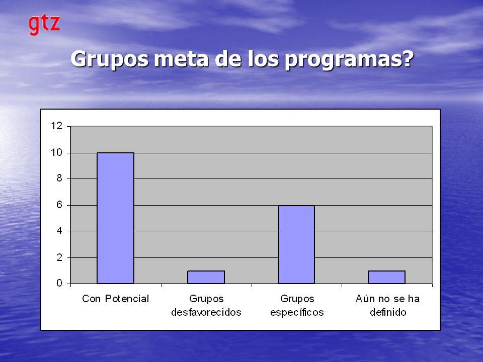 Grupos meta de los programas?