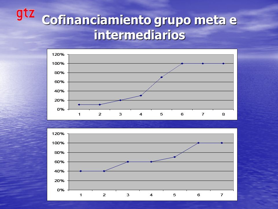 Cofinanciamiento grupo meta e intermediarios