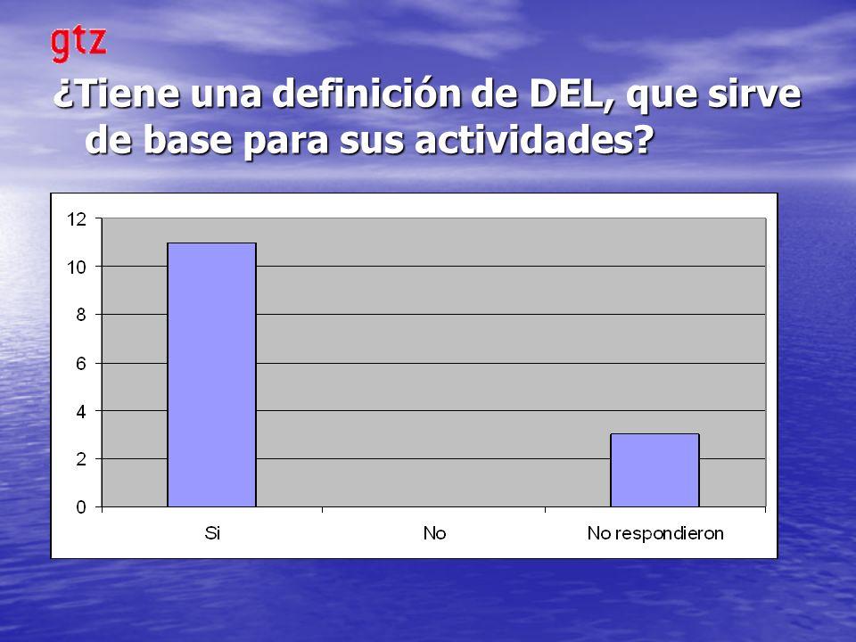 ¿Tiene una definición de DEL, que sirve de base para sus actividades?