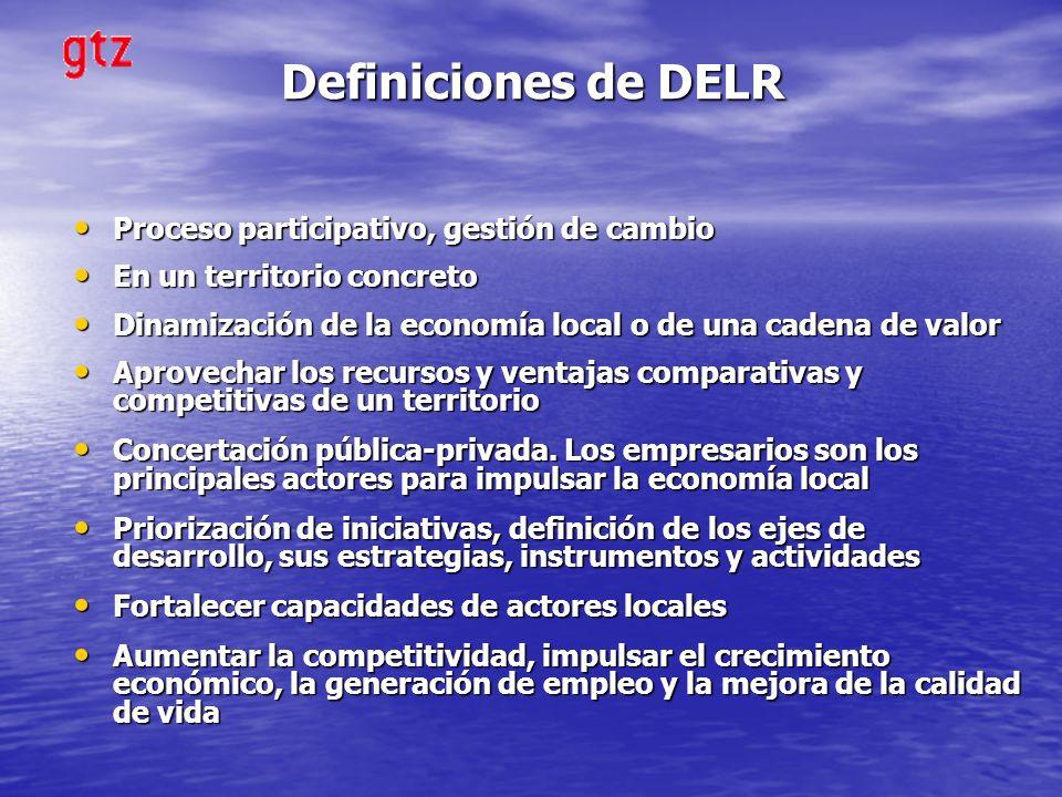 Definiciones de DELR Proceso participativo, gestión de cambio Proceso participativo, gestión de cambio En un territorio concreto En un territorio conc