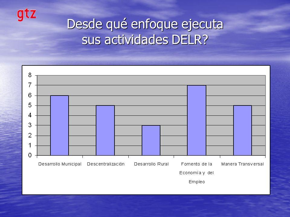 Desde qué enfoque ejecuta sus actividades DELR?