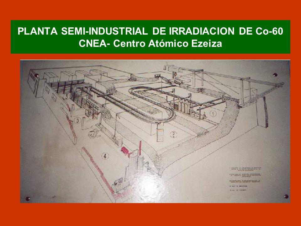 INSTALACIONES INDUSTRIALES DE Co-60 EN ARGENTINA PISI (CNEA)IONICS (DESMET) CONSULTNOA ACTIVIDAD (Ci)450,000600,00080,000 PRIVADA NOSI PROPOSITO ORIGINALTRANSFER.