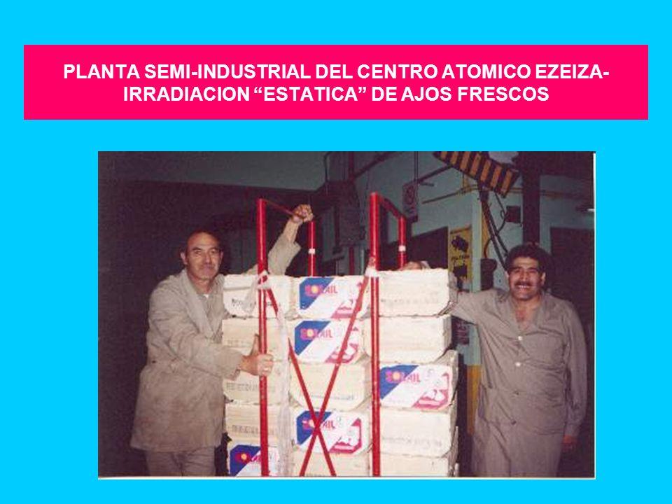 PLANTA SEMI-INDUSTRIAL DE IRRADIACION DE Co-60 CNEA- Centro Atómico Ezeiza